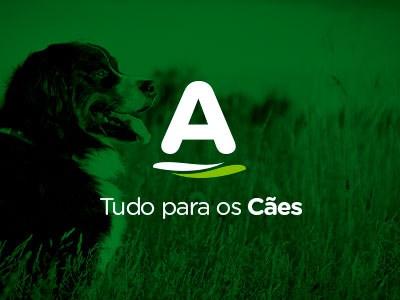 Banner Categoria Para Cães