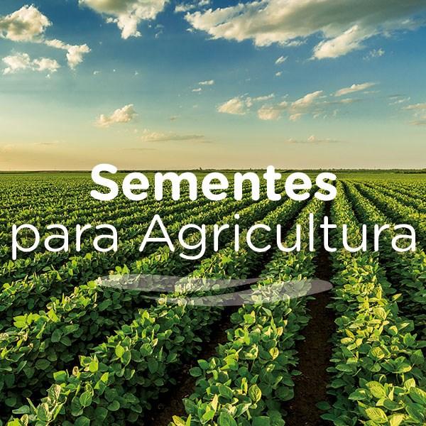 Sementes Agrícolas é na Agrosolo