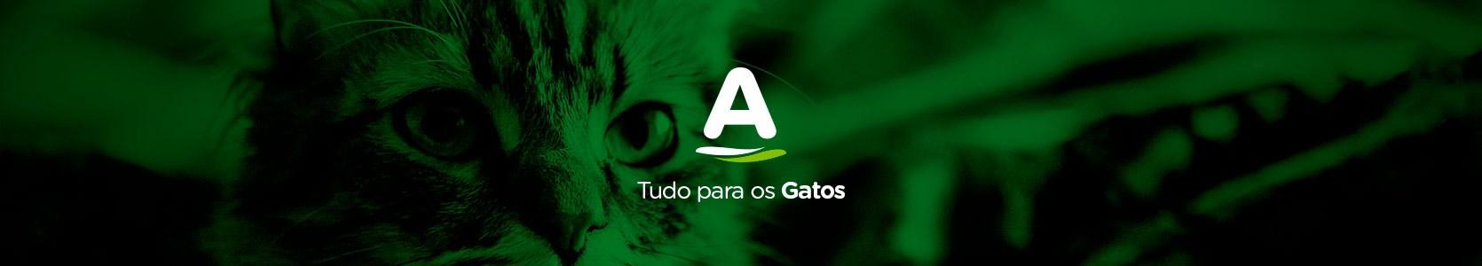 Categoria para Gatos