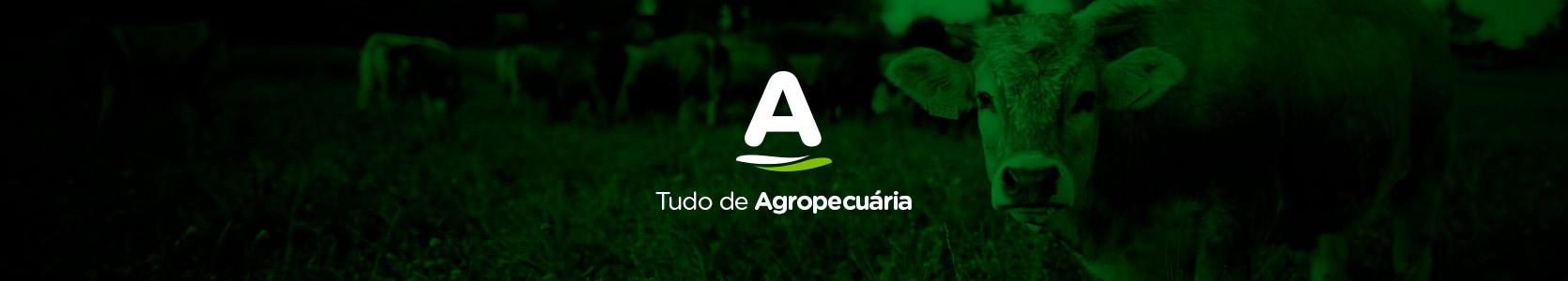 Agropecuária na Agrosolo