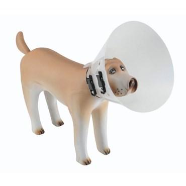 Colar Elizabetano Para Cães