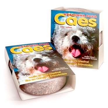 Graminha para Cães 50g - PET PIRA