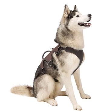 Peitoral Ergonômico Para Cães Ergotrekking - Ferplast