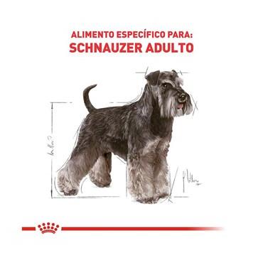 Ração Royal Canin Raças Específicas Schnauzer Miniature Adulto