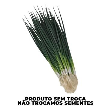 Semente de Cebolinha Totem 100g - Sakata