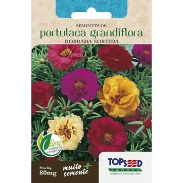 Semente de Portulaca Grandiflora Dobrada Sortida 80 mg TOPSEED