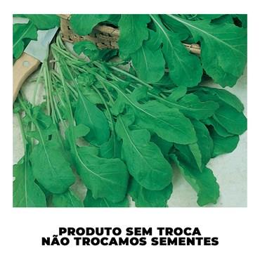 Semente de Rúcula Folha Larga - Sakata
