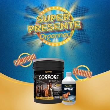 Suplemento Aminoácido Corpore Potros 3 Kg - Ganhe Artho Potros 500 ml